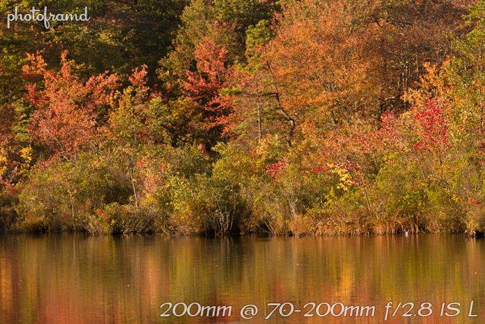 7d-1st-lens-70-200mm3